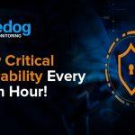 A New Critical Vulnerability Every Half an Hour!